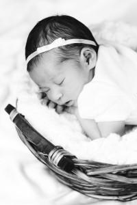 holmgrensfoto bebis 5